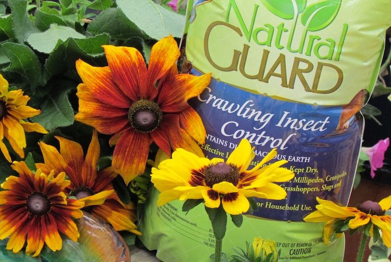 Natural Guard Crawling Insect Control