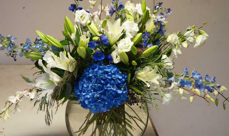 Blue Hydrangea for Hanukkah
