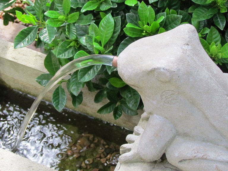 Frog Fountain in the Garden Center