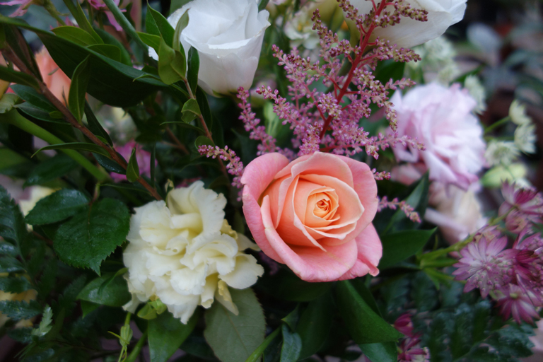 Miss Piggy Roses in Lisianthus