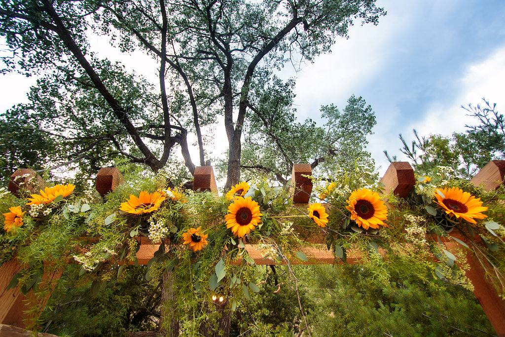 Sunflower Wedding Arch