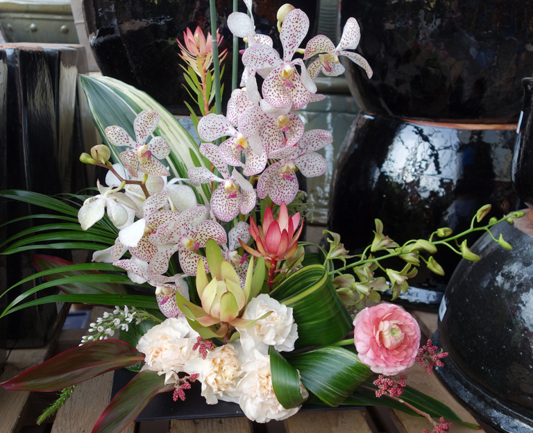 Zen Artistry with Vanda Orchids