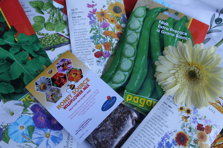 How to start your garden from seed.