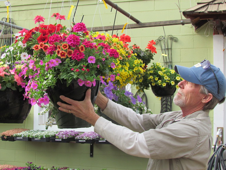 Outdoor Hanging Baskets with Mixed Annuals