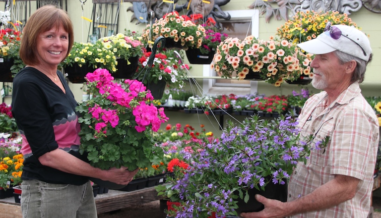 Hanging Baskets for color all summer long
