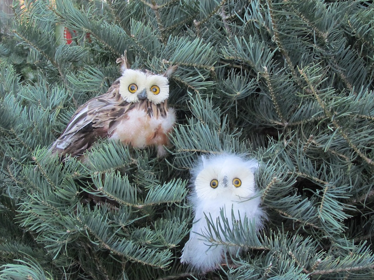 Fuzzy white owl ornament