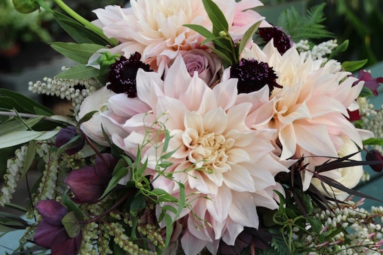 Peach dahlias and magenta Lenten rose make a beautiful bridal bouquet