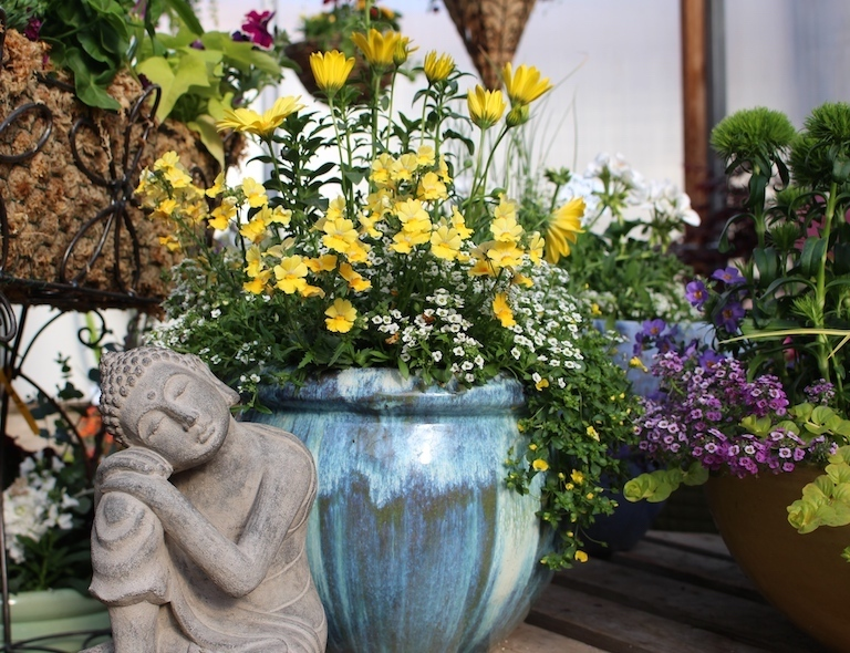 Colorful patio pots that will bloom all summer