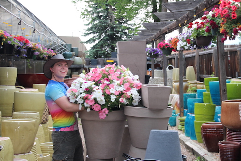 Gabe trying to find the right pot for that gorgeous petunia basket