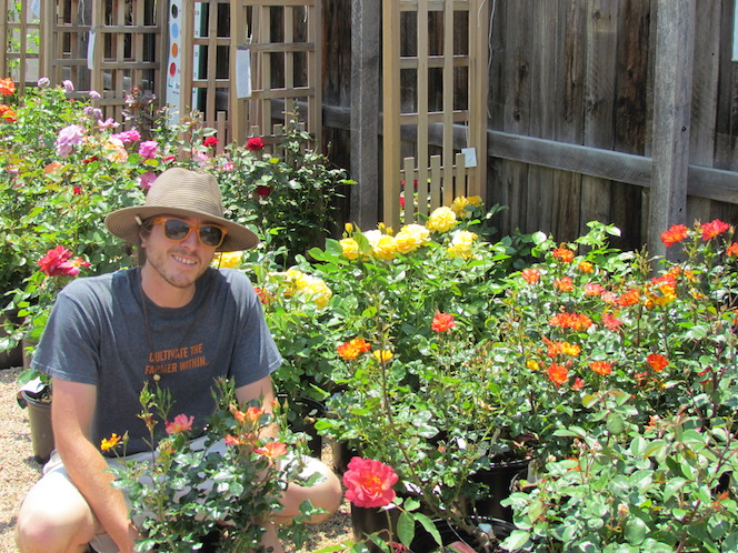 Jason in the rose bushes