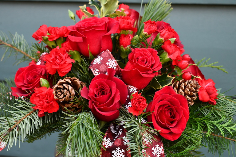 Red roses and evergreens for Christmas