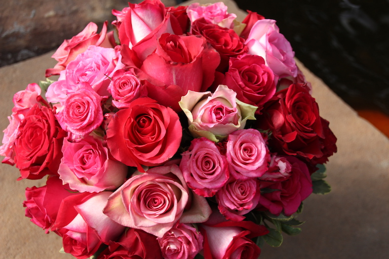 Pink and red roses for a perfect Boulder Valentine's Day