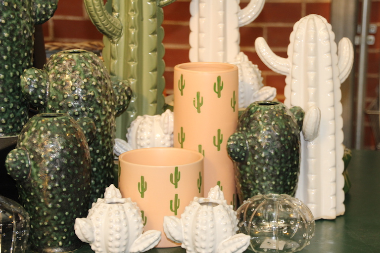 Whimsical Cactus Pottery