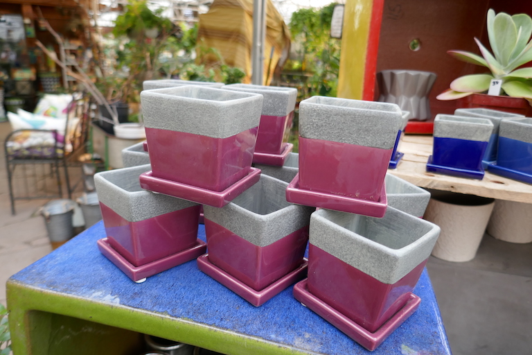 Mini Pots in varied colors and shapes