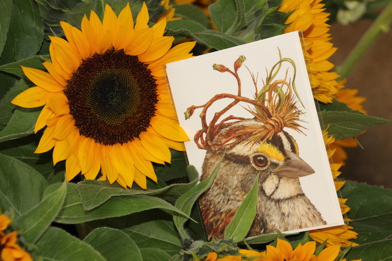 Whimsical Bird Greeting Cards