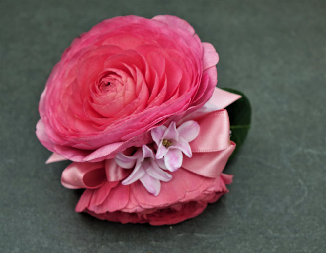 Pink Ranunculus and Hyacynth Sturtz and Copeland